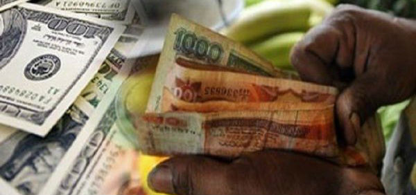 money6